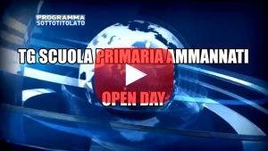 Clicca per vedere la presentazione della primaria Ammannati